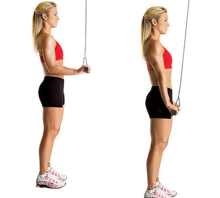 Standing Triceps Press-Down