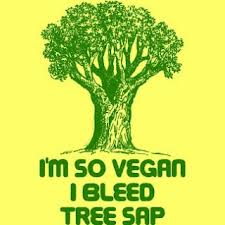 vegan tree sap